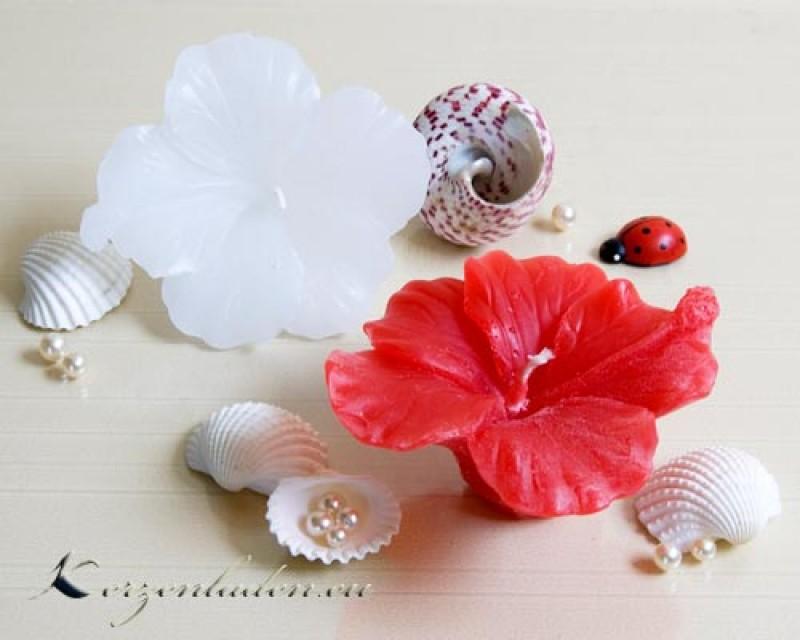 Schwimmkerze Hibiskusblüte 9,5cm Kerzen Schwimmkerzen Tischdeko Ideen Romantik
