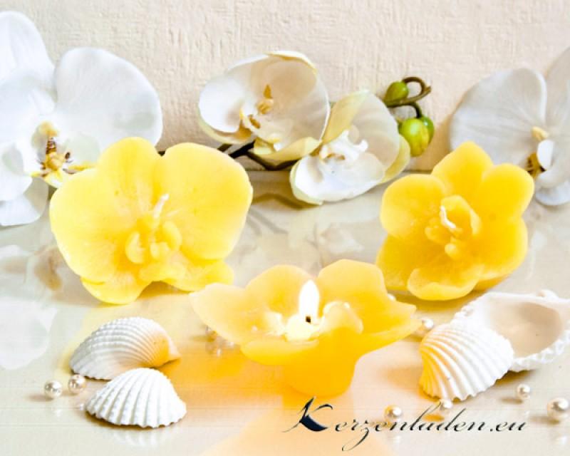 2 schwimmkerzen orchidee mit duft kerzen sets tischdeko for Schwimmkerzen kaufen