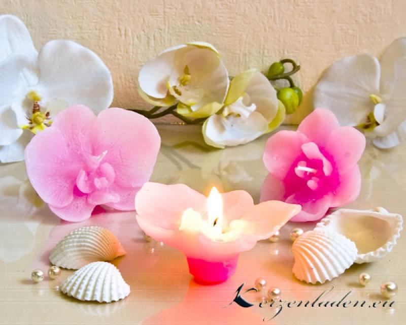 2 Schwimmkerzen Orchidee Mit Duft Kerzen Sets Tischdeko