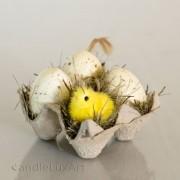 Ostern Eier mit Kücken im Eierkarton