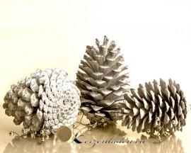 3 echte Maritima-Zapfen - Frost white