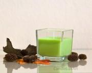 Kerze im Würfel-Glas - Kiwi